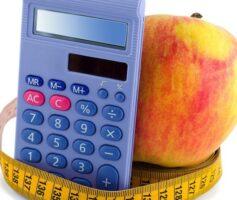 Como fazer Calculo de calorias Diária?