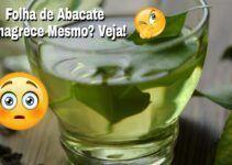 Chá de folha de abacate emagrece? Benefícios e Efeitos Colaterais