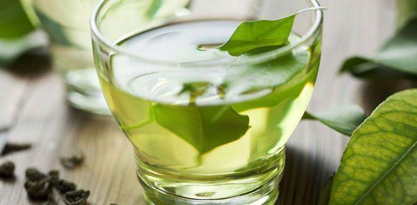 Chá de folha de abacate como preparar